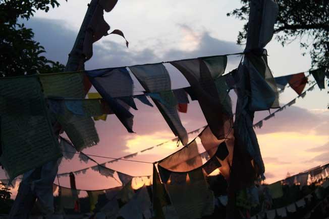 Drophan Ling Sommer 2011, Foto von A. R u f t